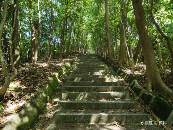 다링산 삼림공원