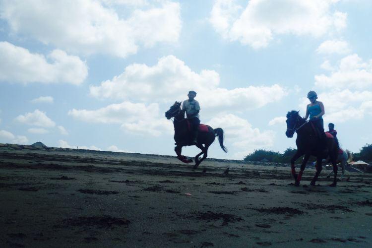 Kuda P Stables, Bali Horse Riding Experience