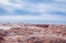 冷冷暖暖沙漠探险古代文明