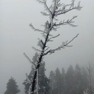 阳明山国家森林公园旅游景点攻略图