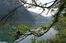 偶遇东江 偶遇东江 旅行的真正目的或许不是看山看水,只为遇见更好的自己。我和赵选择了一个近点的景点—