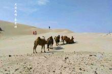 大漠风情--奈曼旗2日沙漠之旅