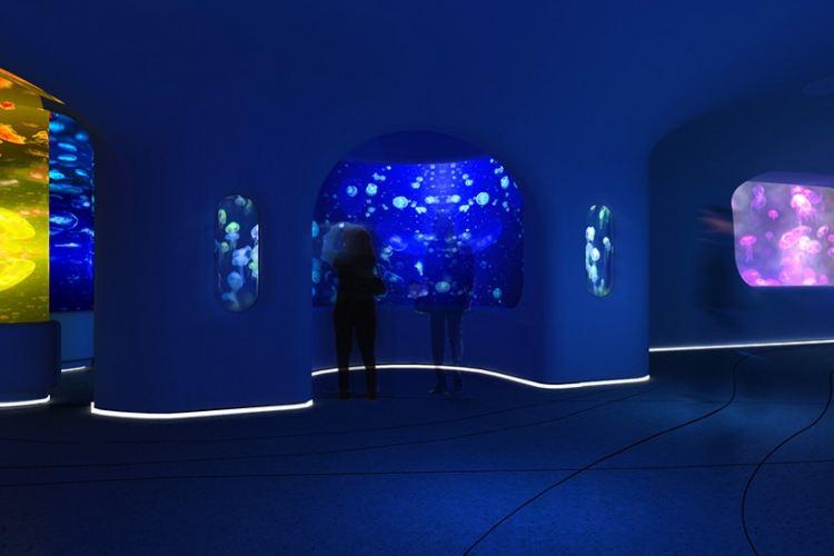 Dream Aquarium3