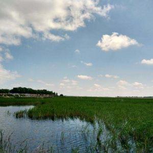 向海湿地旅游景点攻略图