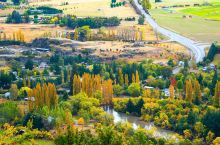 箭镇:新西兰最美秋季,一场树木的视觉盛宴