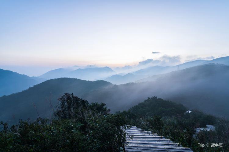 다위산 국립삼림공원1