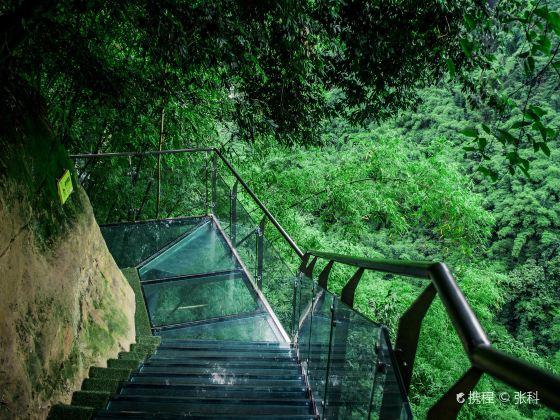 대나무 협곡 풍경명승구(진지계곡)