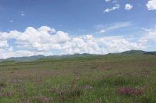 甘南·夏河·桑科草原