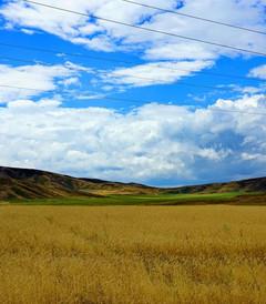 [哈萨克斯坦游记图片] 一路行走,一路感受,一路生活 ——纪念自己的第三次哈萨克斯坦之旅