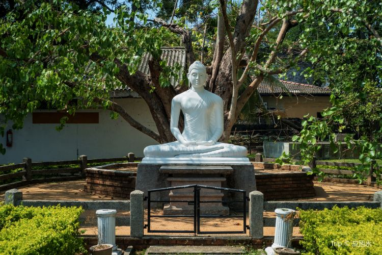 Colombo National Museum1