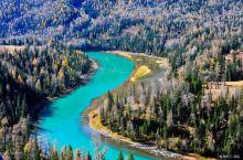 中国最美10大原始森林