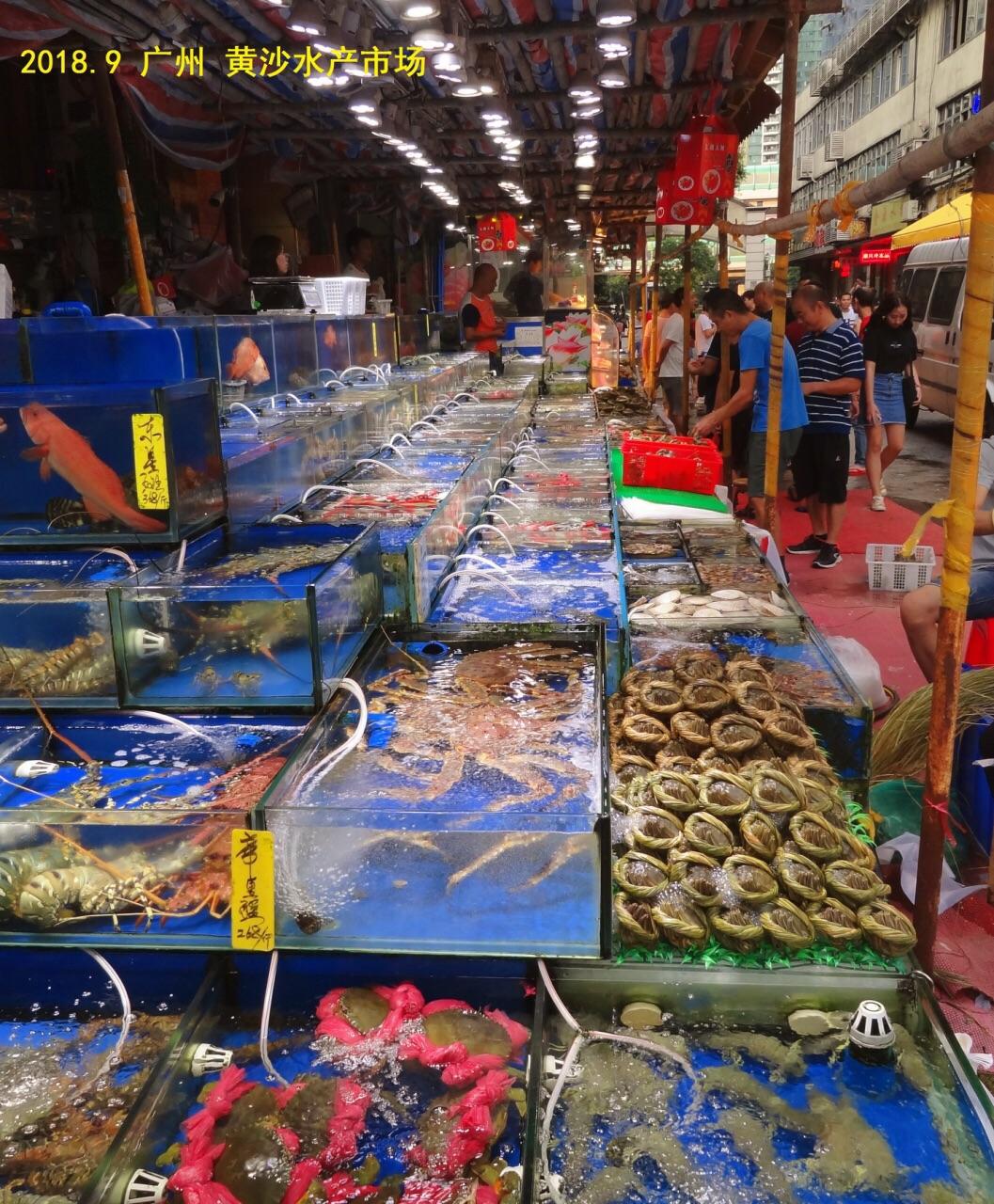 广州水产市场_广州黄沙海鲜水产交易市场怎么样/如何去,黄沙海鲜水产交易市场 ...