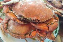 到惠东盐州岛旅游偶遇特色美食-----盐焗蟹😋