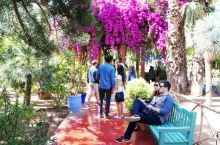 马约尔花园——圣罗兰的伊甸园