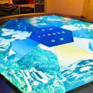 火山岛地学博物馆旅游景点攻略图
