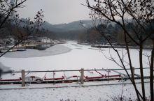青岛中山公园的雪