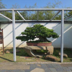 鲍家花园旅游景点攻略图