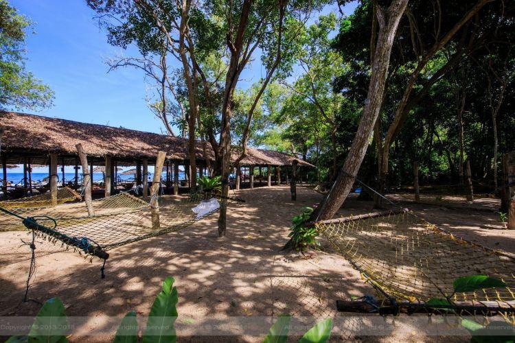 Borneo Kellybays1