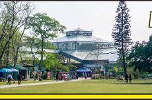 """广州4500亩""""侏罗纪""""公园曝光!清新玻璃房、森系热带雨林…"""