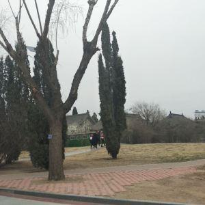 古塔公园旅游景点攻略图