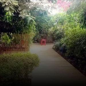 嘉禾水立方旅游景点攻略图