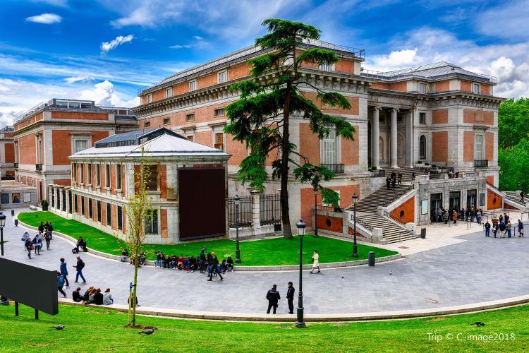 普拉多博物館2