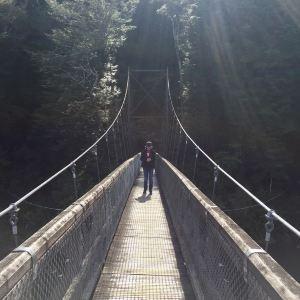 马纳波利镇旅游景点攻略图