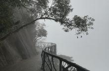 雨雾中的江西三清山,目视不到10米