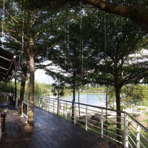 Sarawak Orchid Garden旅游景点攻略图