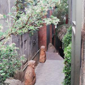 千里走单骑·杨丽萍艺术酒店旅游景点攻略图