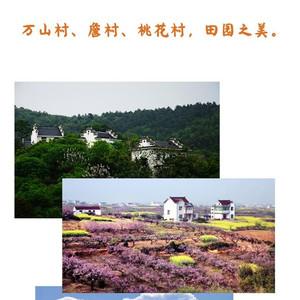 当涂游记图文-浸入中华文化之中,寻根当涂两日游