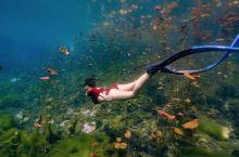 洞潜的圣地!墨西哥坎昆洞潜之旅
