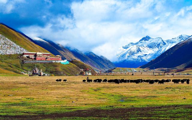 以梦为马,不负韶华,自驾川藏北线,走进西藏康巴,在国道317遇见最美秋色