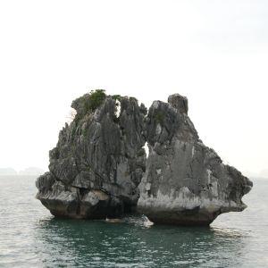 斗鸡石旅游景点攻略图