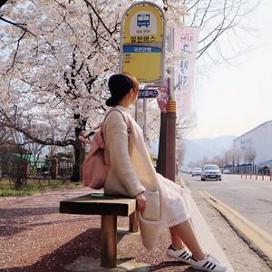 昌原市游记图文-韩国赏樱花好地点,人少,出大片~
