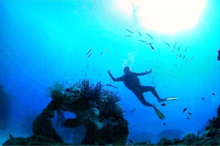 린이 극지해양세계