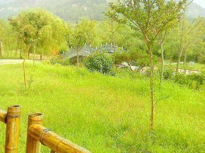 蒼馬山國際旅遊度假區