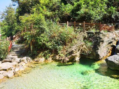 Nanhai Bay Forest Ecological Park