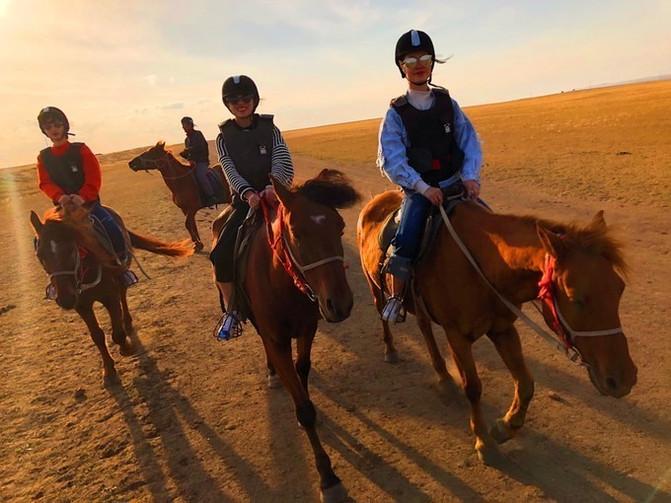 呼伦贝尔大草原 一万个人眼中有一万种呼伦贝尔大草原的秋 – 呼伦贝尔游记攻略插图61