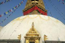 尼泊尔猴庙