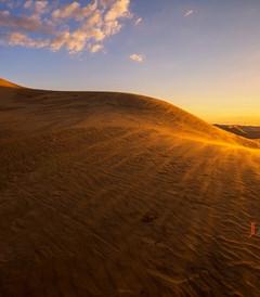 [鄂尔多斯游记图片] 鄂尔多斯:端午节自驾去草原,听听风吹响沙