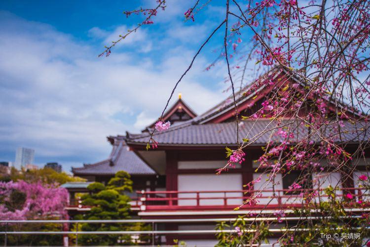 Zojo-ji Temple3