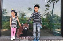 全家老小乐游——五龙山野生动物园🐒🐱🐤🐮🐯🐰🐲