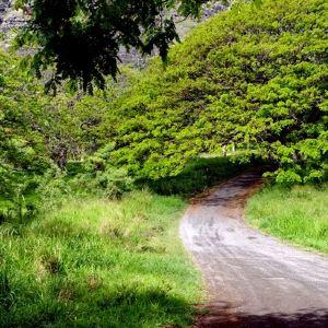 古兰尼地区公园旅游景点攻略图