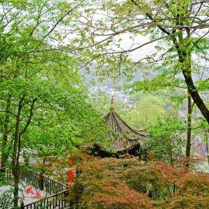 南华山国家森林公园旅游景点攻略图