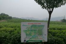 北京张裕葡萄园