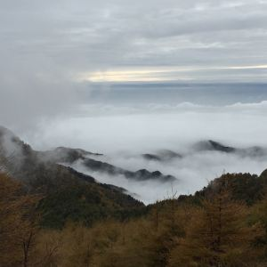红崖峡谷旅游景点攻略图