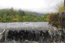 抵达威廉堡前,到了格伦科一个小湖泊(Glencoe Lochan),这里人迹罕至,难得恬静。