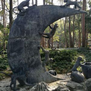 桂花岛旅游景点攻略图