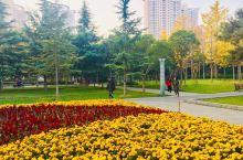 郑州人民广场:商圈中心的人民广场,是市民清晨锻练的好去处,外地游客也可前往行走,然后到附近的紫荆山公